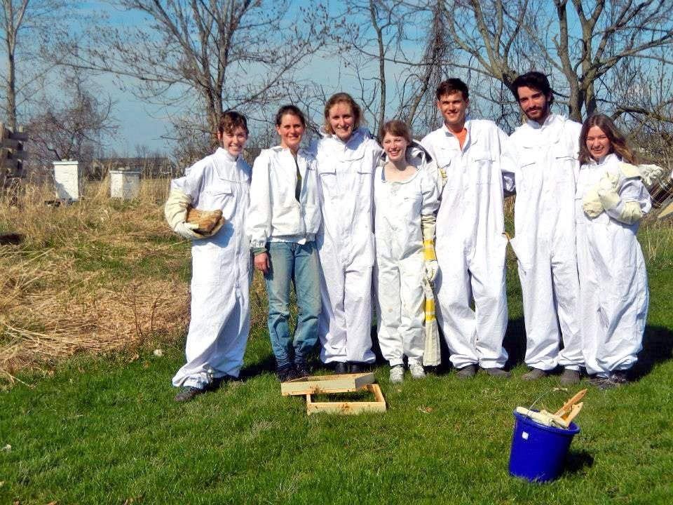 GVL / Courtesy GVSU Beekeepers Club