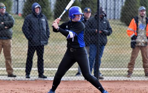 Laker softball improves to 14-2