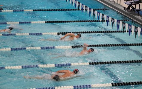 GVSU Swimming & Diving team wins again versus Lewis