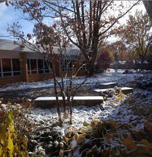 Temple Emanuel's garden. Courtesy / Cathrin Finney
