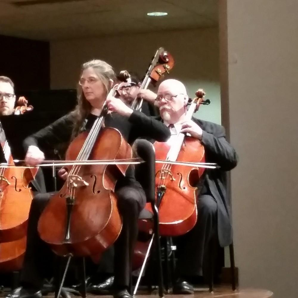 GVL / Claire Fisher The Grand Rapids Symphony Orchestra perfroms inside Cook-DeWitt Center Wednesday, Feb. 3, 2016.