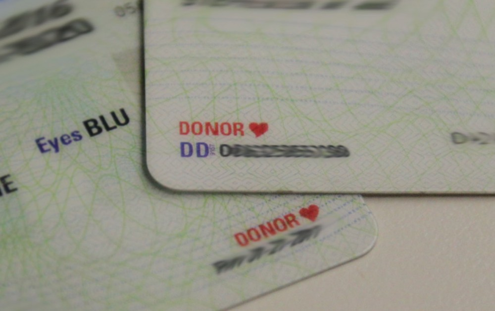 GVL / Emily Frye   Donor driver licences on Wednesday January 24, 2018.