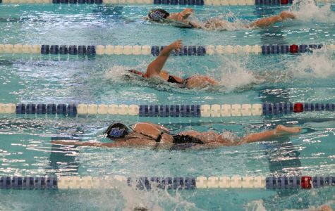 GV Swimming & Diving continues winning streak at Calvin