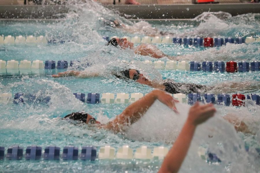 GVSU Swimming & Diving host intra-squad scrimmage on Senior Day due to inclement weather