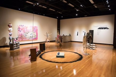 """Systems Processing"" exhibit plants collaboration between art and agriculture at GVSU"