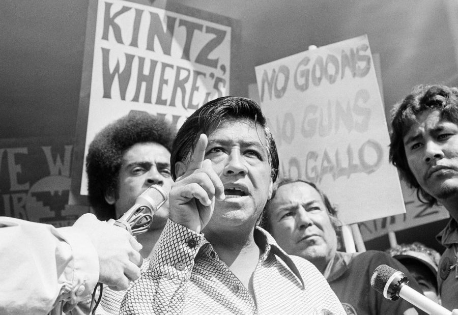 The labor leader drew influence from the nonviolent tactics of Martin Luther King Jr. and Mahatma Gandhi, organizing picket strikes and boycotts. (Courtesy Associated Press)